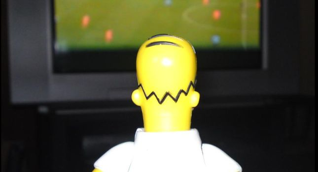 Homer Simpson Watching TV