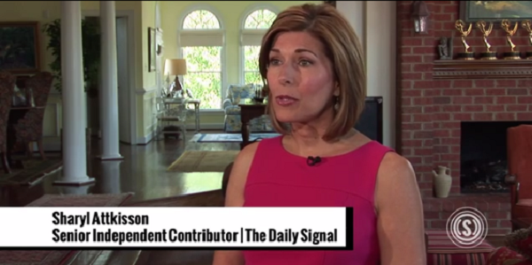 Sharyl Attkisson, The Daily Signal