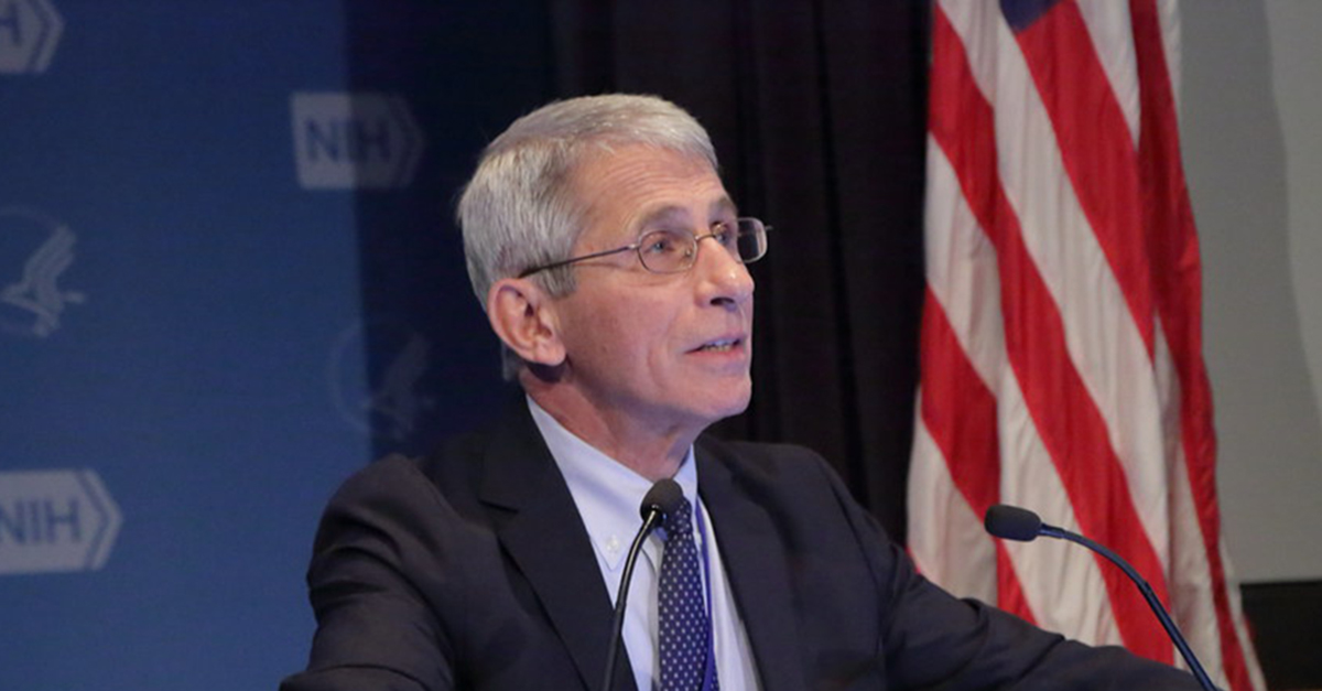 Far-right media target Anthony Fauci's daughter with conspiracy theory about her employment