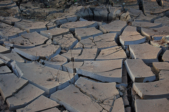 Cracked Earth, Creative Commons: Matt Rudge, 2006