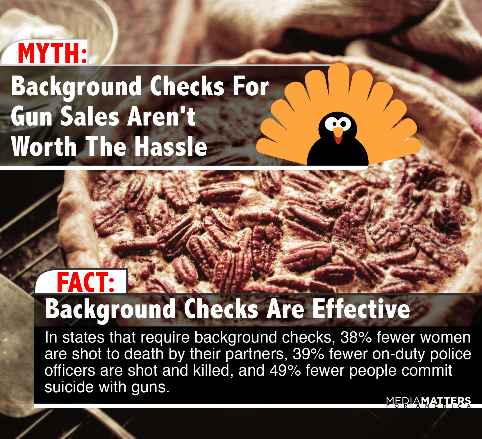 Background Checks Myths and Facts
