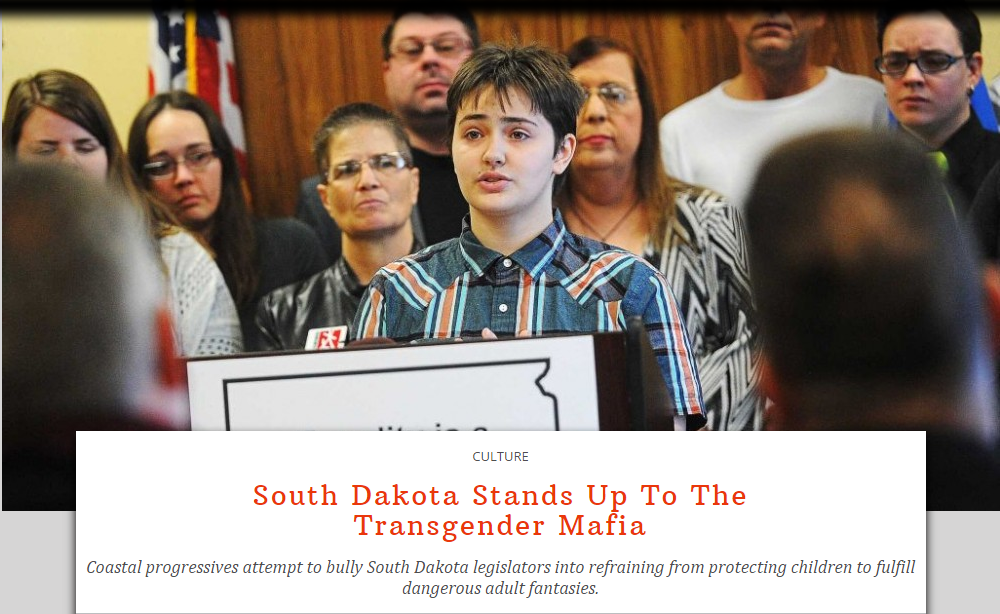 The Federalist Uses Image Of High School Student To Attack  Transgender Mafia