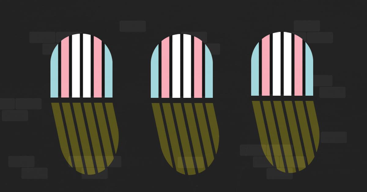 Image result for trans prisoners