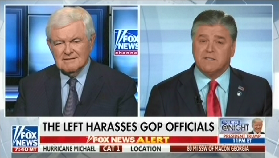 "Fox's Newt Gingrich: The Democrats are ""a brown shirt party"""