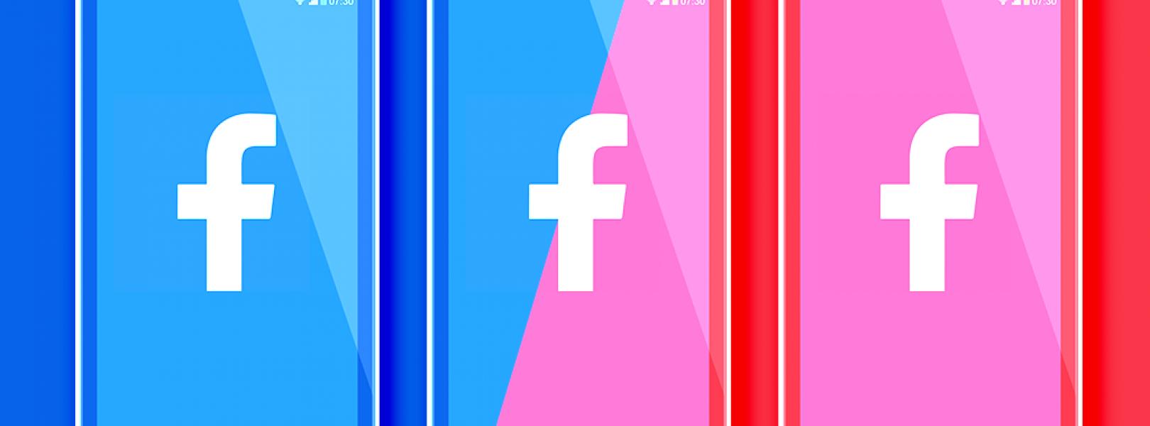 facebook politics