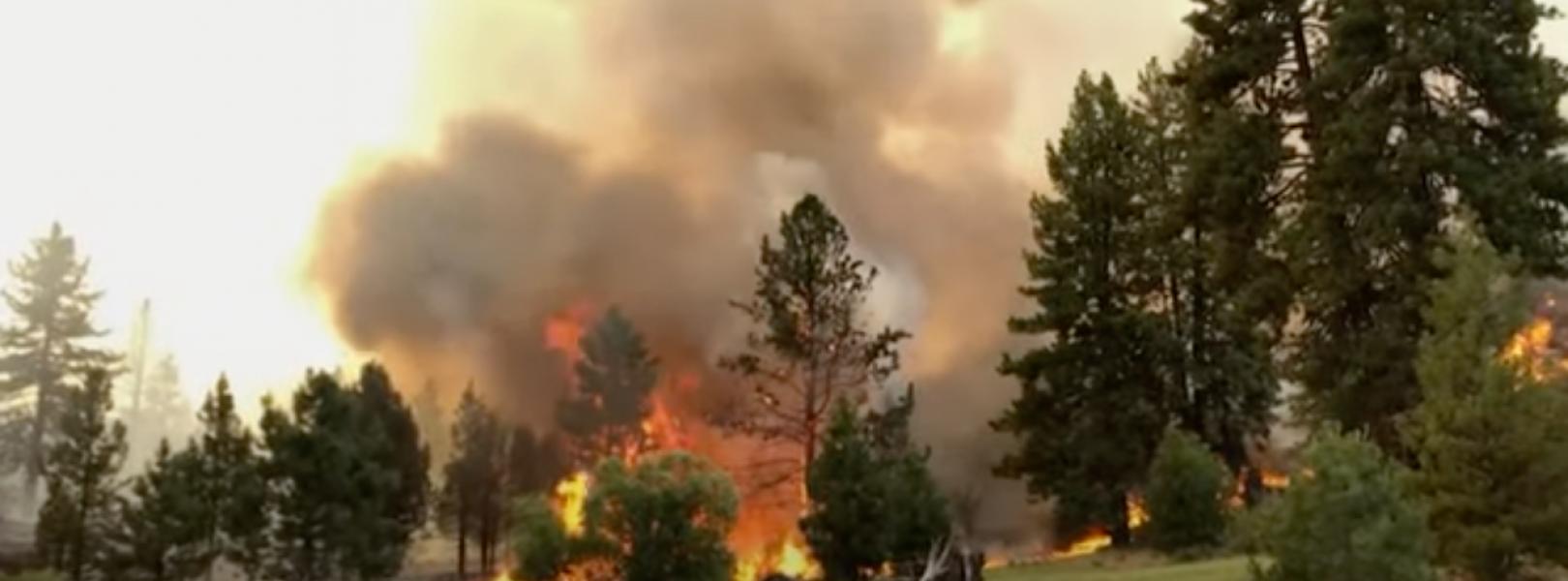 AP wildfire CA coverage