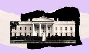 An image of the White House