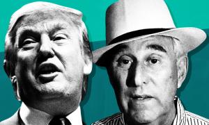 Right-wing media figures demand Donald Trump pardon Roger Stone following guilty verdict