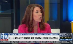 Fox's Tammy Bruce lies that Republicans can't ask questions or call witnesses during impeachment hearings