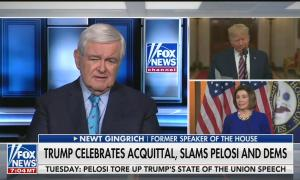 "Newt Gingrich saying Nancy Pelosi not introducing Trump properly is ""almost a declaration of war"""