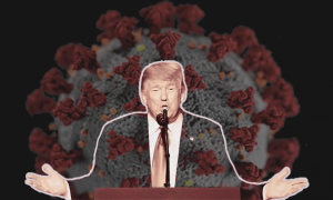 Trump and the coronavirus