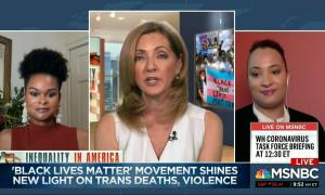 Black trans activists Raquel Willis and Ianne Fields Stewart outline how to be a trans ally on MSNBC