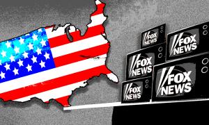Fox democracy