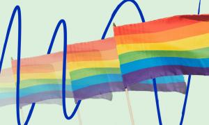 Rainbow flags on a green background