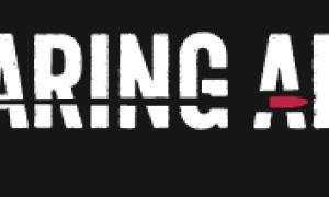 Pro-gun website Bearing Arms