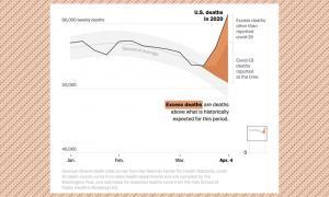 Wapo COVID mortality chart