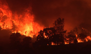 SoCalWildfire_USGS_061814.png