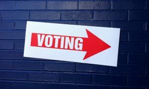 voting20141104.jpg