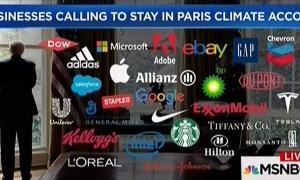 msnbc_paris_businesses.jpg