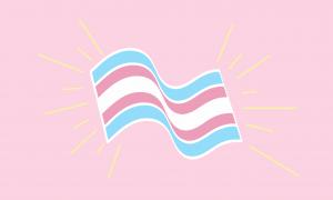 trans-flag-8.png