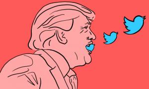 Trump-Tweets-Conspiracy-Theories.png