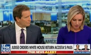 fnc-an-20181116-acosta-whpass.png