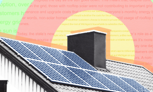 Utilities-Local-Media-Rooftop-Solar.png