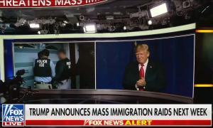 mass-immigration-on.jpg