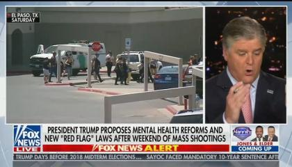 """Sean Hannity: """"I'd like to see the perimeter of every school in America surrounded, secured by retired police"""""""