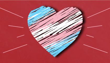 Trans pride flag in the shape of a heart