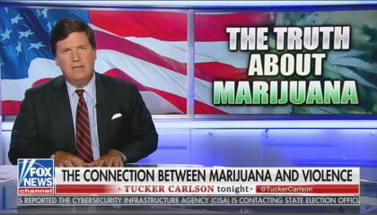 Tucker Carlson suggests link between mass shootings and marijuana use