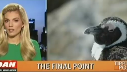 Liz Wheeler and a Penguin