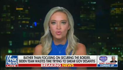 """chyron reads, """"RATHER THAN FOCUSING ON SECURING THE BORDER, BIDEN TEAM WASTES TIME TRYING TO SMEAR GOV DESANTIS"""""""