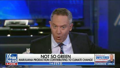 """chyron reads, """"NOT SO GREEN: MARIJUANA PRODUCTION CONTRIBUTING TO CLIMATE CHANGE"""""""