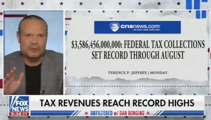 """Fox's Dan Bongino: """"Outside of the military and our court system, what are you really getting"""" for your taxes?"""