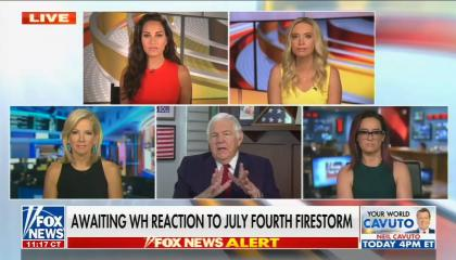 Fox's Kayleigh McEnany blatantly lies about founding fathers and slavery