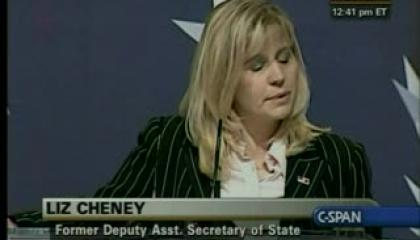 cpac-20100218-cheneyapologize.flv