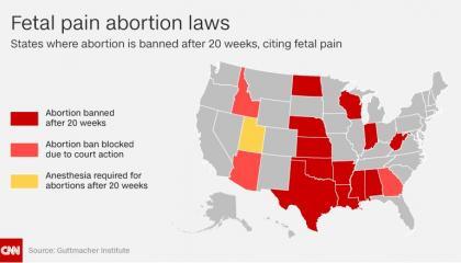 CNN_20_Week_Ban_Graph.jpg