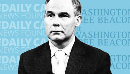 daily-caller-washington-free-beacon-pruitt.png