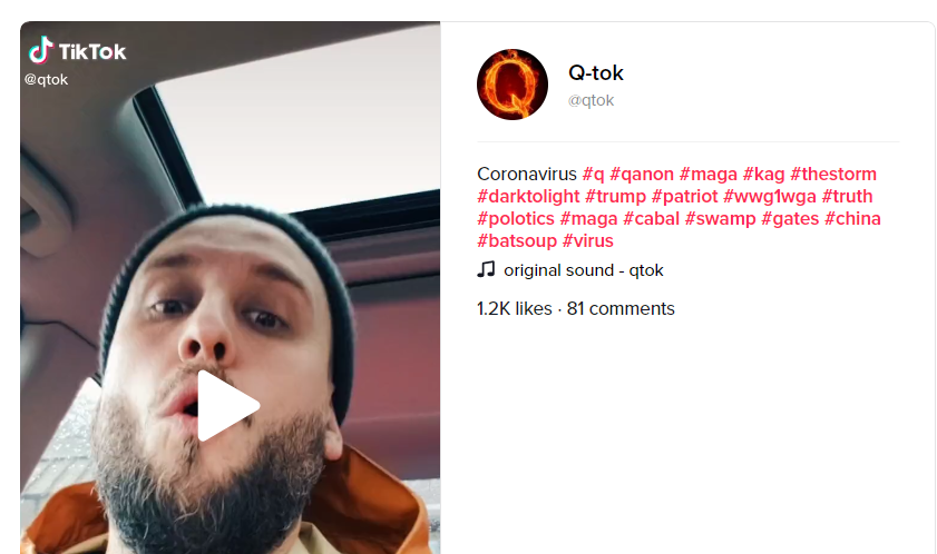 TikTok video screenshot4 QAnon