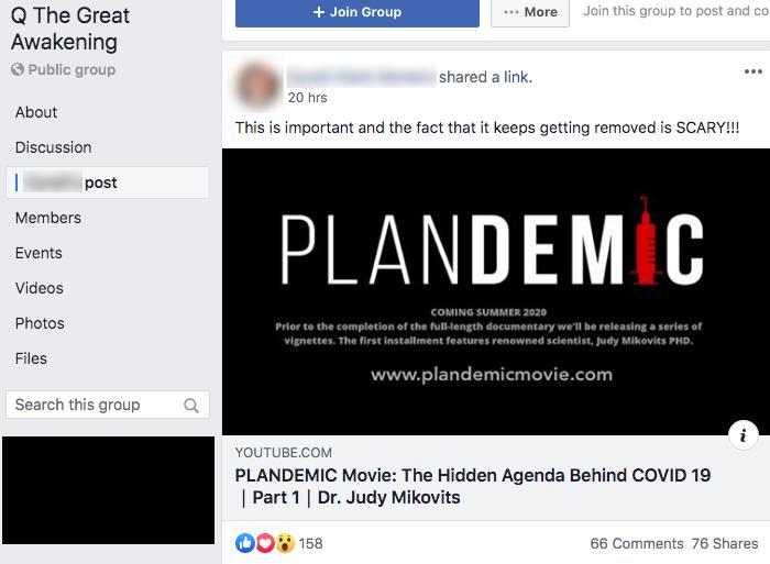 Plandemic Facebook groups5