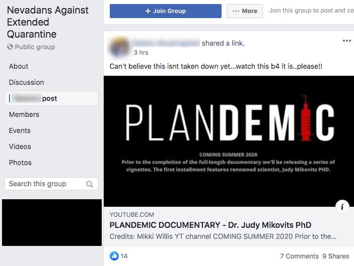 Plandemic Facebook groups6