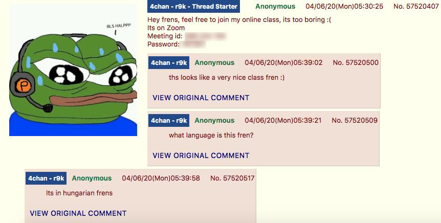 4chan Zoombombing14