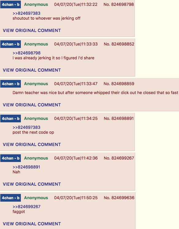 4chan Zoombombing class post2