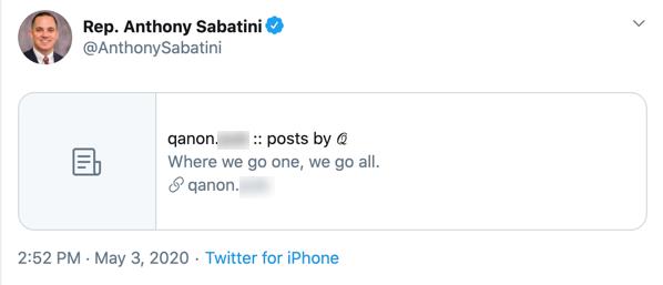 Anthony Sabatini QAnon Twitter