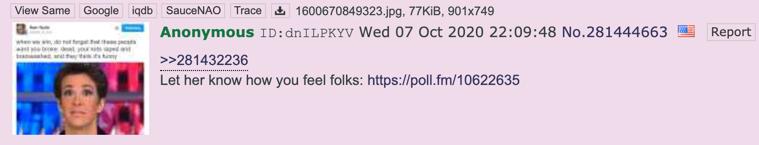 4chan Drudge VP poll3